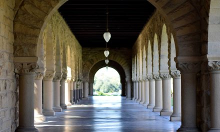 What is the atmosphere like in top universities like Stanford and Harvard?